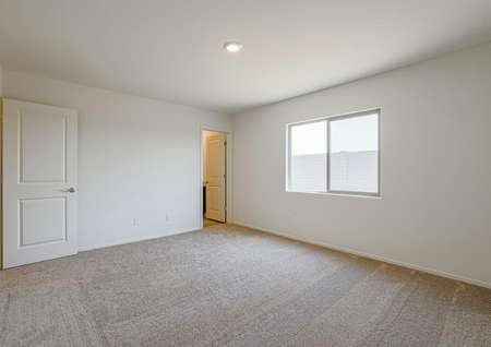 Master bedroom with incredible windows, allowing for lots of natural lights, and tan carpet.