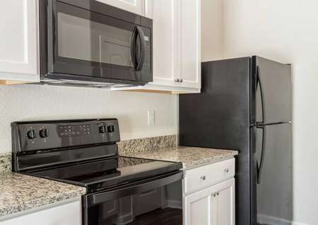 Alexander kitchen with light color granite counters, black appliances, and white cabinetry