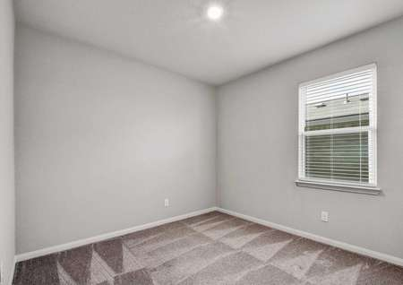 Fannin bedroom with brown carpeting, gray walls, and white trim on the baseboards and window frame