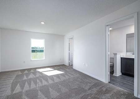 The carpeted master bedroom containing a full bathroom and a large walk-in closet on the second floor.