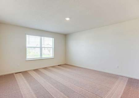 Nicollet bedroom with brown carpets, white on white walls, and white framed large window