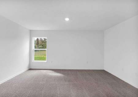 Spare bedroom with carpeted floors and plenty of natural light entering through the window.