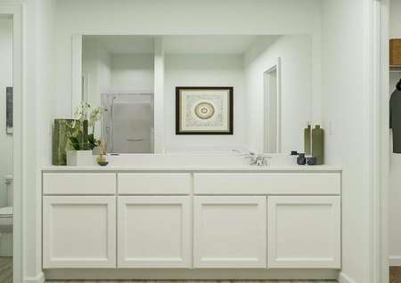 Rendering of owners bath with large   counterspace and sink, green decorations.