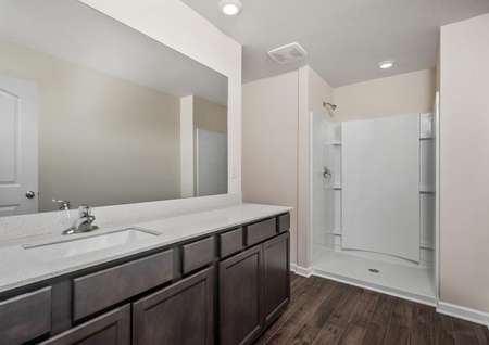The master bath has a large walk-in shower and spacious vanity.