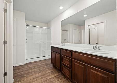 Incredible master bath with dual-sink vanity and spacious walk-in shower.