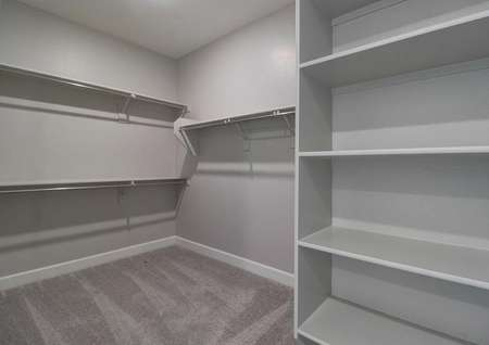 Bartlett walk-in closet with clothes hanging rods, storage shelves, and carpeted floor