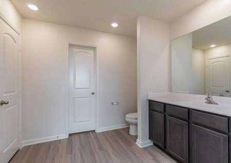 Blanco bathroom with large extended vanity top, dark brown cabinets, and extended mirror