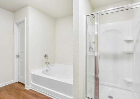 Master bathroom featuring a step-in shower and a separate soaker tub.