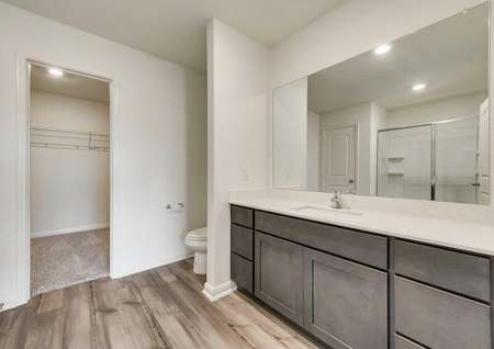 Large master bath highlighting a beautiful vanity and walk-in closet.
