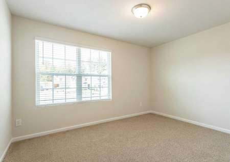 Avery office with large windows, white trim, and brown carpeting