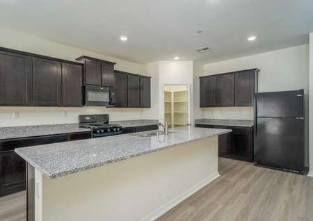 Venice kitchen with large extended granite vanity, custom brown cabinets, and walk-in pantry