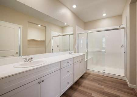 The master bath has a stunning vanity and a huge walk-in shower.
