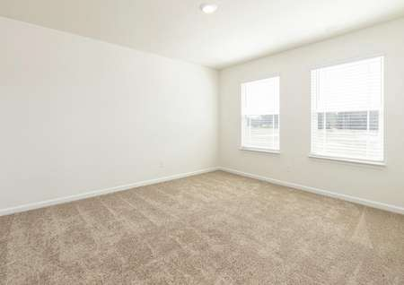 Spacious master bedroom with carpet and two windows.