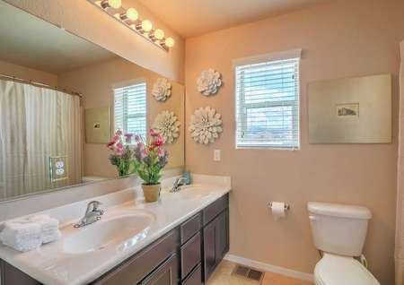 Sierra model home bathroom staged with decorative flowers, wall art, and completed with a peachish brown color paint on the walls