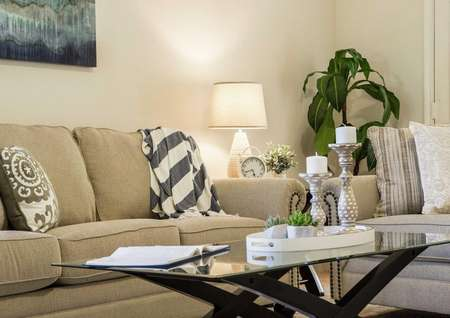 Staged living room with glass top wooden coffee table, beige sofa with striped blanket, and house plant in the corner of the room.