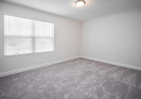 Fripp guest bedroom with large window, ceiling light, and light brown carpet