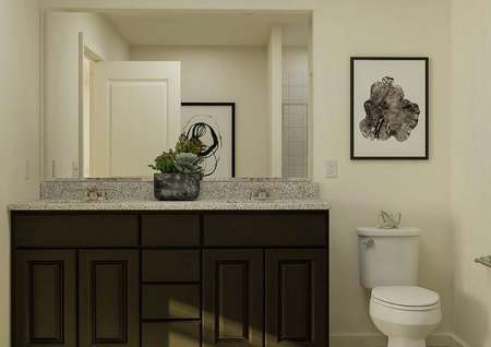 Rendering of the master bath focused on   the spacious double-sink vanity with brown cabinetry and a mirror and the   toilet next to it.