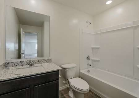 Secondary bathroom with a beautiful single-sink vanity and a dual tub and shower.