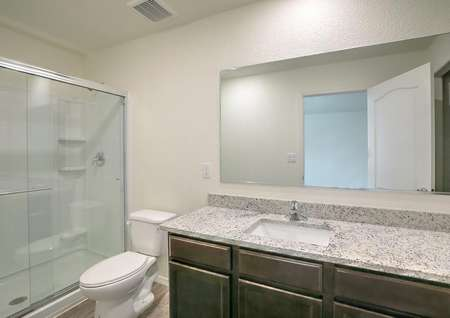 Master bath with walk-in shower, granite countertops and an attached walk-in closet.