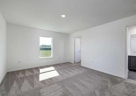 Carpeted master bedroom with a window, walk-in closet and a full bathroom.