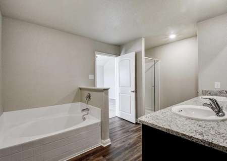 Shelby master bathroom with white trim on gray walls, separate bath and shower, and granite countertop with two sinks