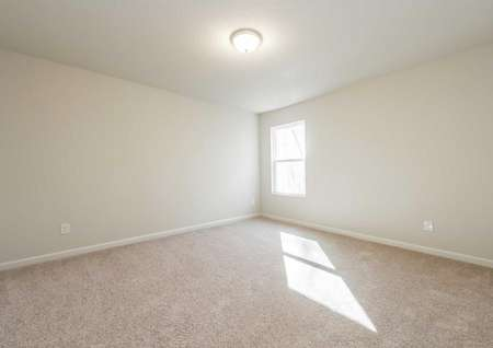 Hartwell finished bedroom with soft carpeting, white Frame Window and baseboards, and overhead light fixture