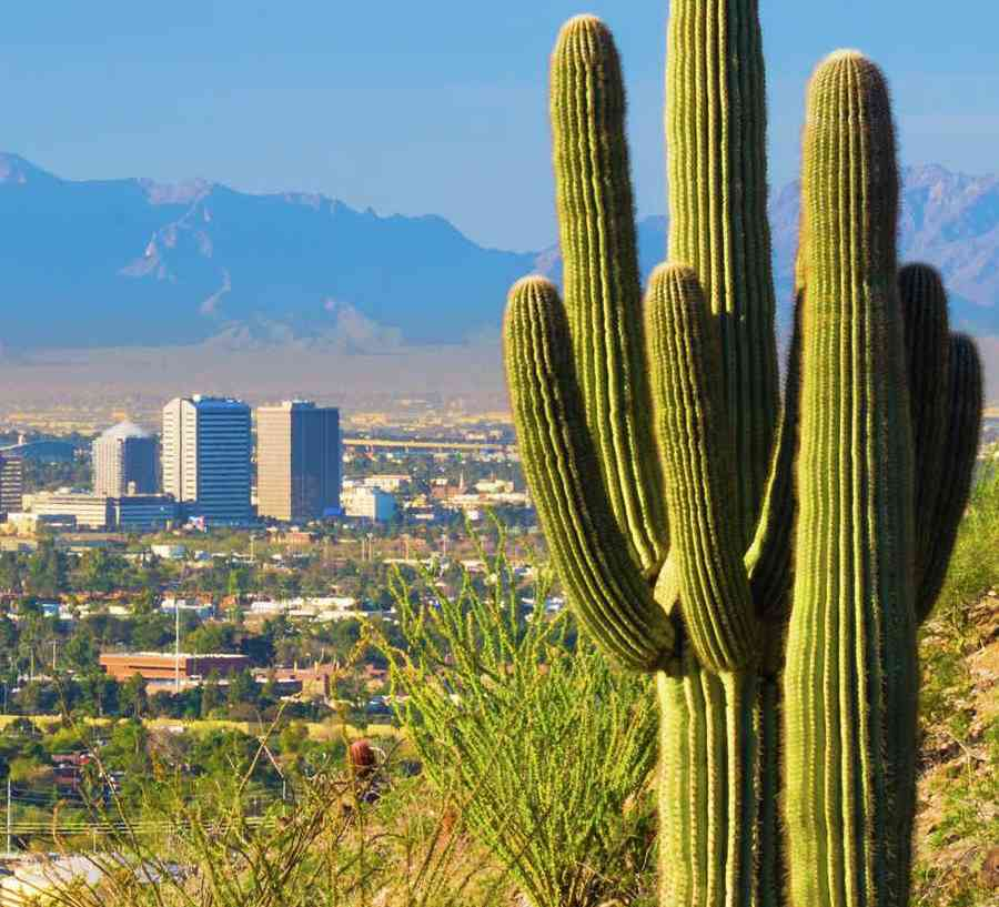 Phoenix, Arizona skyline with saguaro cacti, city skyscrapers, and South Mountain in the background