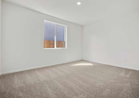 Master bedroom with great natural light and carpet.