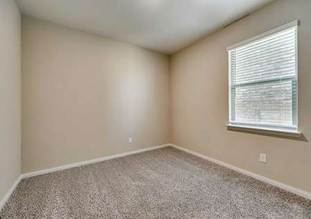Maple bedroom with brown carpet, white trim walls, and large window with white trim