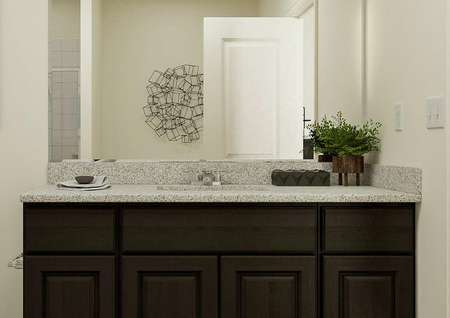 Rendering of the master bath focused on   the brown cabinet vanity with spacious countertop, mirror and white toilet.