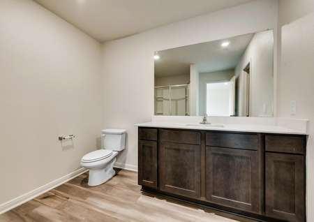 The master bath has a stunning vanity with brown cabinetry.