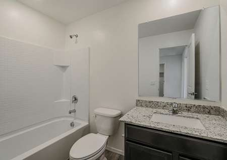 Guest bathroom with granite countertops and a dual shower and tub.