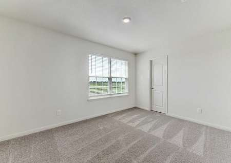 Travis bedroom with large window with blinds, brown carpeting, and white walls