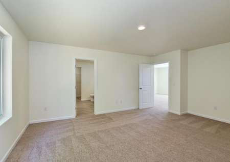 Spacious master bedroom with carpet and window.