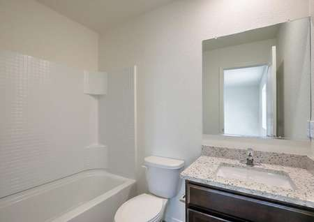 Bathroom with granite countertops and a dual shower and bath tub.