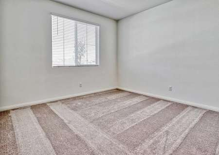 Aster bedroom soft carpeting, white on gray walls, and large white framed window