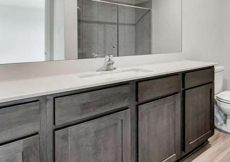 Jaguar master bathroom with vinyl wood style floor, can lights, and long vanity counter