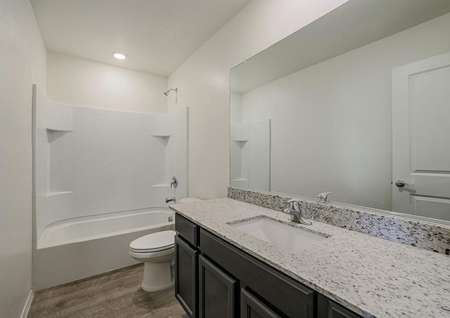 Secondary bathroom with granite countertops and a dual shower and tub.