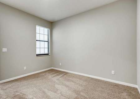 Patricio finished interior with carpet floors, white trim walls, and window with white frame