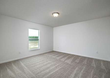 Large guest bedroom with carpeted flooring and a window letting in plenty of natural light.