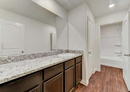 Travis bathroom with spacious sink, brown cabinets, large mirror and doorway to shower.