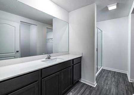 Full master bathroom with large countertop space, a step-in shower and a walk-in closet.