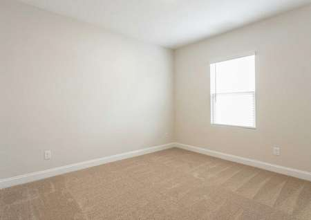 Burton bedroom with window, brown carpet, and off white painted walls