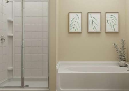 Rendering of the master bathroom with a   spacious shower and separate tub decorated with a potted plant.