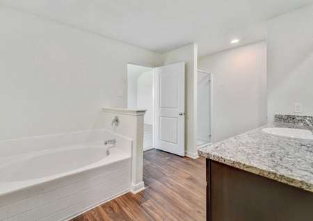 Rio master bathroom with granite counters, white fixtures, and walk-in closet