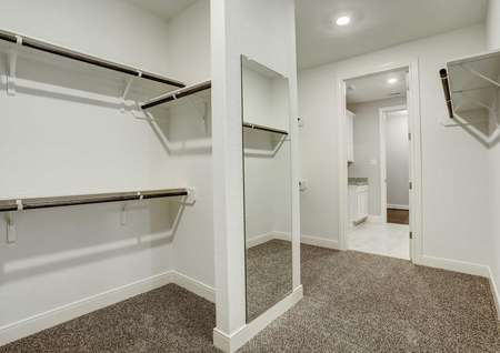 Bradley walk-in closet with clothes hanging racks, mirror, and carpet flooring