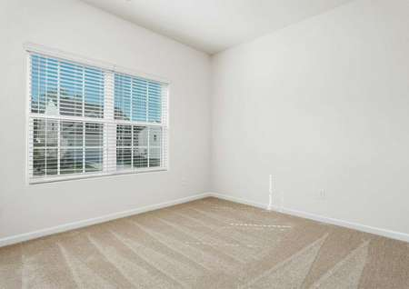 Alamance bedroom with large windows and beige carpet