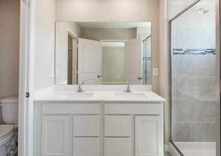 The Calabria floor plan bathroom with double sinks, quartz countertops, white cabinets and a walk-in shower.
