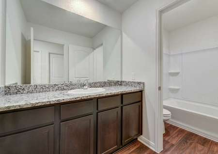 Rio bathroom with large granite vanity top, brown custom cabinets, and fixed wall light