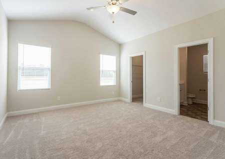 Allatoona master suite with carpeting, walk-in closet, and large windows